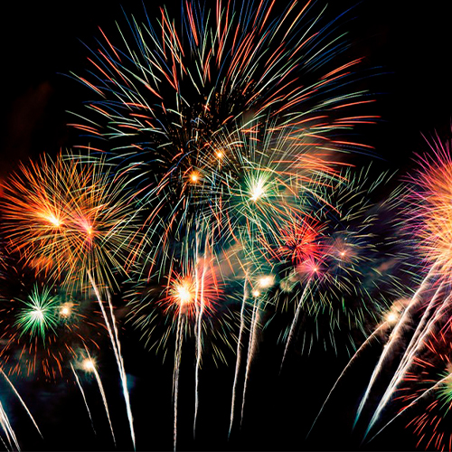 ЭМИЛИ Групп поздравляет с Новым годом!